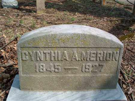 MERION, CYNTHIA ANN - Franklin County, Ohio | CYNTHIA ANN MERION - Ohio Gravestone Photos