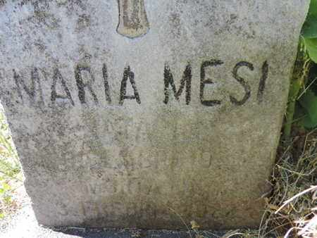 MESI, MARIA - Franklin County, Ohio | MARIA MESI - Ohio Gravestone Photos