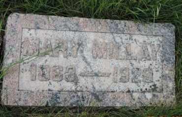 MILLAY, MARY - Franklin County, Ohio | MARY MILLAY - Ohio Gravestone Photos
