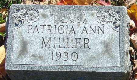MILLER, PATRICIA ANN - Franklin County, Ohio | PATRICIA ANN MILLER - Ohio Gravestone Photos