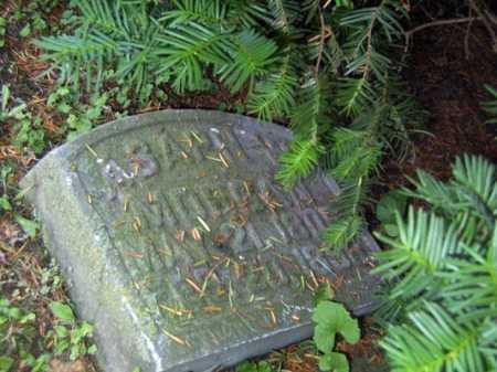 MORGAN, ASAPH W. - Franklin County, Ohio   ASAPH W. MORGAN - Ohio Gravestone Photos