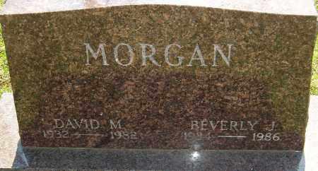 MORGAN, DAVID M - Franklin County, Ohio | DAVID M MORGAN - Ohio Gravestone Photos