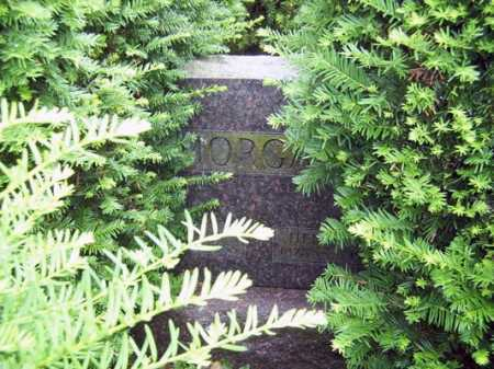 MORGAN, HENRY HERBERT - Franklin County, Ohio | HENRY HERBERT MORGAN - Ohio Gravestone Photos