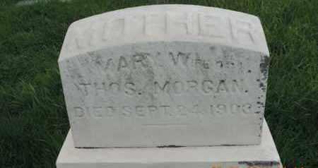 MORGAN, MARY - Franklin County, Ohio | MARY MORGAN - Ohio Gravestone Photos