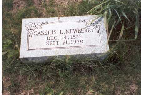 NEWBERRY, CASSIUS L. - Franklin County, Ohio | CASSIUS L. NEWBERRY - Ohio Gravestone Photos