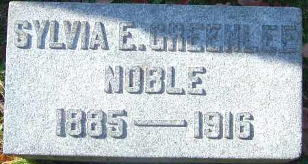 NOBLE, SYLVIA E - Franklin County, Ohio | SYLVIA E NOBLE - Ohio Gravestone Photos