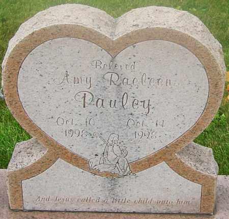 PAULEY, AMY RAELEEN - Franklin County, Ohio | AMY RAELEEN PAULEY - Ohio Gravestone Photos
