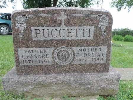 PUCCETTI, GEORGIA C. - Franklin County, Ohio | GEORGIA C. PUCCETTI - Ohio Gravestone Photos