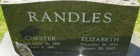 RANDLES, ELIZABETH - Franklin County, Ohio | ELIZABETH RANDLES - Ohio Gravestone Photos