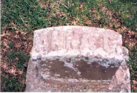 RAREY, ANNA C. - Franklin County, Ohio   ANNA C. RAREY - Ohio Gravestone Photos