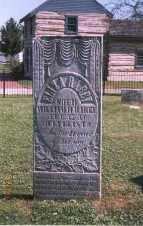 RYNE RAREY, ELIZA - Franklin County, Ohio   ELIZA RYNE RAREY - Ohio Gravestone Photos
