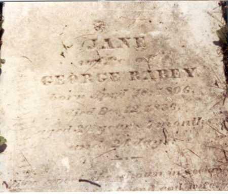 WILSON RAREY, JANE - Franklin County, Ohio | JANE WILSON RAREY - Ohio Gravestone Photos