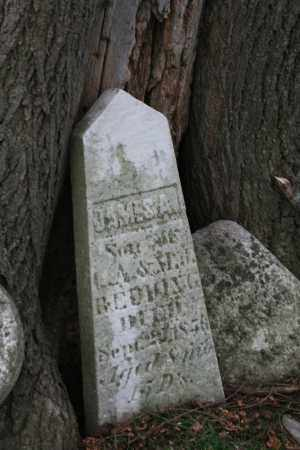 REDWING, JAMES A - Franklin County, Ohio | JAMES A REDWING - Ohio Gravestone Photos