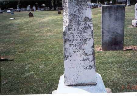 REEVES, INFANTS - Franklin County, Ohio   INFANTS REEVES - Ohio Gravestone Photos
