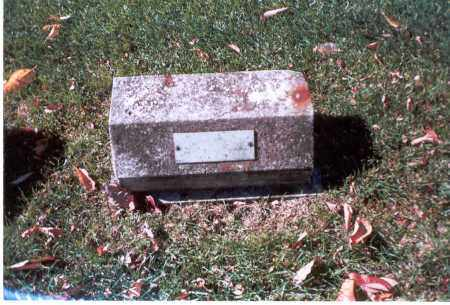 RHYAN, HARRY - Franklin County, Ohio | HARRY RHYAN - Ohio Gravestone Photos