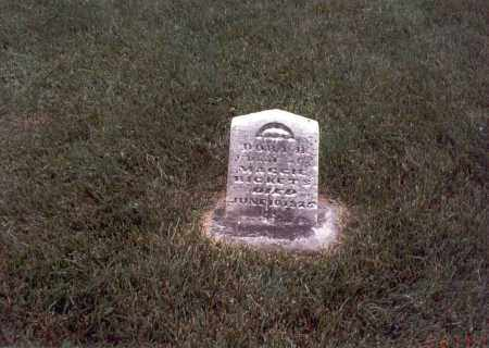 RICKETS, DORA B. - Franklin County, Ohio | DORA B. RICKETS - Ohio Gravestone Photos