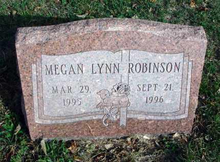 ROBINSON, MEGAN LYNN - Franklin County, Ohio | MEGAN LYNN ROBINSON - Ohio Gravestone Photos