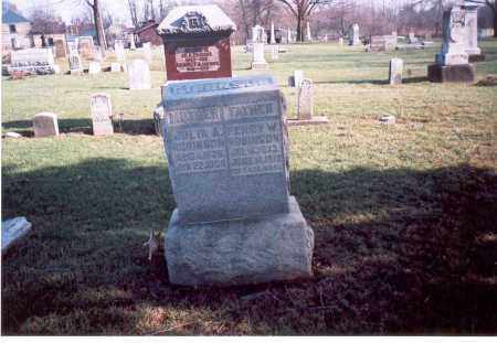 VAN TRINE ROBINSON, JULIA A. - Franklin County, Ohio | JULIA A. VAN TRINE ROBINSON - Ohio Gravestone Photos