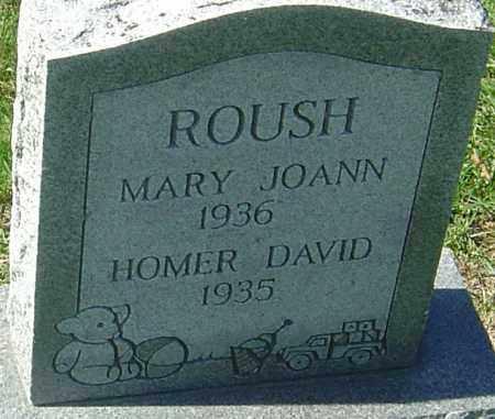 ROUSH, HOMER DAVID - Franklin County, Ohio | HOMER DAVID ROUSH - Ohio Gravestone Photos