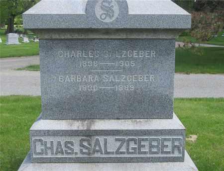 SALZGEBER, BARBARA - Franklin County, Ohio | BARBARA SALZGEBER - Ohio Gravestone Photos