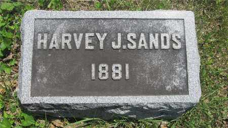 SANDS, HARVEY J. - Franklin County, Ohio | HARVEY J. SANDS - Ohio Gravestone Photos