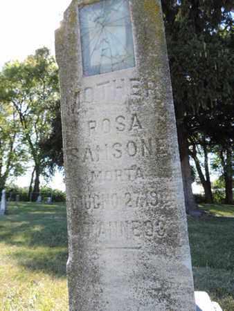 SANSONE, ROSA - Franklin County, Ohio | ROSA SANSONE - Ohio Gravestone Photos