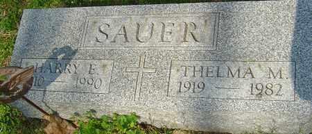 SAUER, HARRY E - Franklin County, Ohio   HARRY E SAUER - Ohio Gravestone Photos
