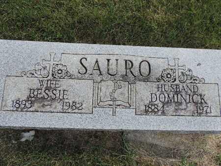 SAURO, DOMINICK - Franklin County, Ohio | DOMINICK SAURO - Ohio Gravestone Photos