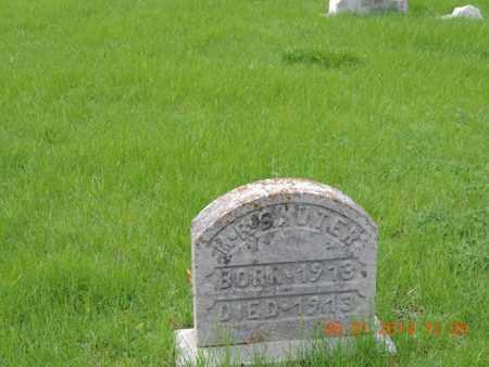 SAUTER, M - Franklin County, Ohio | M SAUTER - Ohio Gravestone Photos