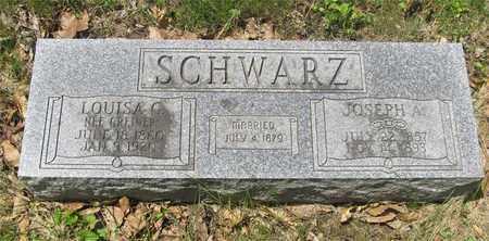 GREINER SCHWARZ, LOUISA C. - Franklin County, Ohio | LOUISA C. GREINER SCHWARZ - Ohio Gravestone Photos
