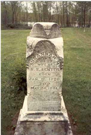 SCHLEICH SENTER, SUSANNAH MARGARETTA - Franklin County, Ohio | SUSANNAH MARGARETTA SCHLEICH SENTER - Ohio Gravestone Photos