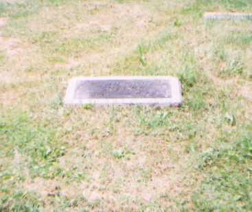 SHANKS, WILLIAM H. - Franklin County, Ohio | WILLIAM H. SHANKS - Ohio Gravestone Photos