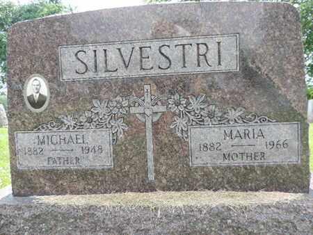 SILVESTRI, MICHAEL - Franklin County, Ohio   MICHAEL SILVESTRI - Ohio Gravestone Photos