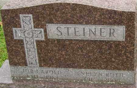 STEINER, EVELYN - Franklin County, Ohio | EVELYN STEINER - Ohio Gravestone Photos