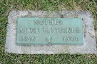 STEINLE, ALICE E. - Franklin County, Ohio | ALICE E. STEINLE - Ohio Gravestone Photos
