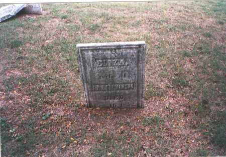 STEVENSON, ELIZA - Franklin County, Ohio | ELIZA STEVENSON - Ohio Gravestone Photos