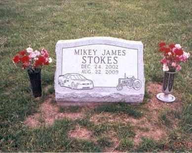 STOKES, MIKEY JAMES - Franklin County, Ohio | MIKEY JAMES STOKES - Ohio Gravestone Photos