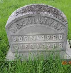 SULLIVAN, W. D. - Franklin County, Ohio | W. D. SULLIVAN - Ohio Gravestone Photos