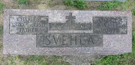 SVEHLA, CHRISTINA - Franklin County, Ohio | CHRISTINA SVEHLA - Ohio Gravestone Photos