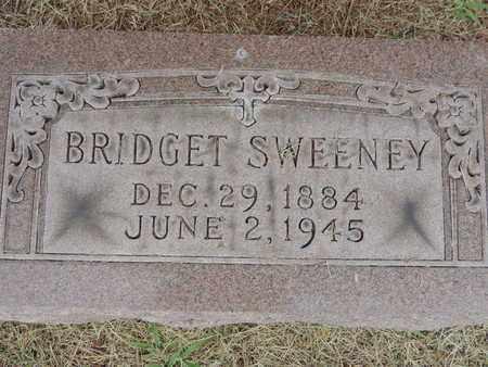 SWEENEY, BRIDGET - Franklin County, Ohio | BRIDGET SWEENEY - Ohio Gravestone Photos