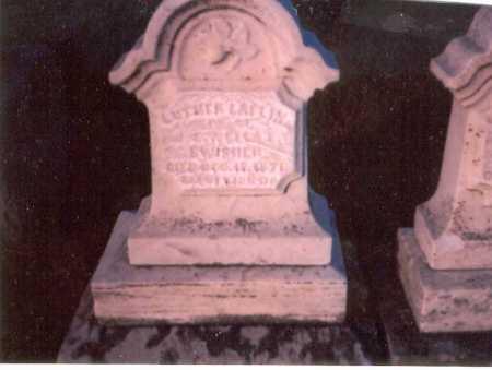 SWISHER, LUTHER LAFLIN - Franklin County, Ohio | LUTHER LAFLIN SWISHER - Ohio Gravestone Photos