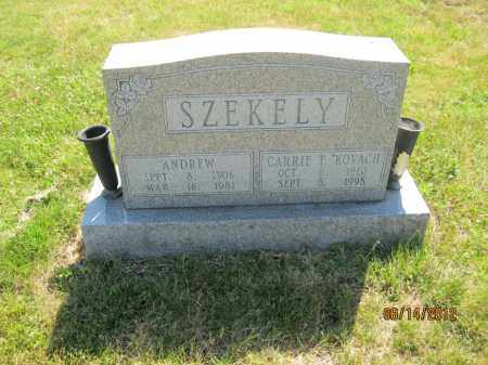 SZEKELY, ANDREW - Franklin County, Ohio | ANDREW SZEKELY - Ohio Gravestone Photos