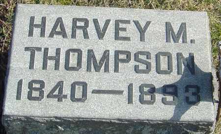 THOMPSON, HARVEY M - Franklin County, Ohio | HARVEY M THOMPSON - Ohio Gravestone Photos