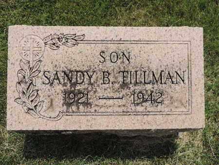 TILLMAN, SANDY B. - Franklin County, Ohio | SANDY B. TILLMAN - Ohio Gravestone Photos