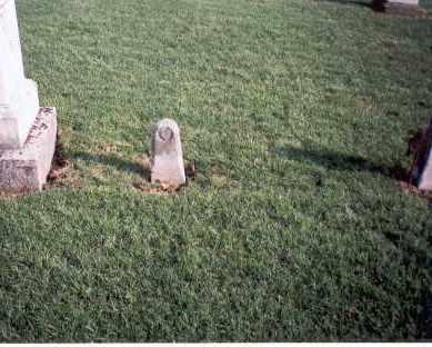 VAN WORMER, WILLIAM - Franklin County, Ohio | WILLIAM VAN WORMER - Ohio Gravestone Photos