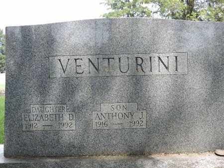VENTURINI, ELIZABETH D. - Franklin County, Ohio   ELIZABETH D. VENTURINI - Ohio Gravestone Photos