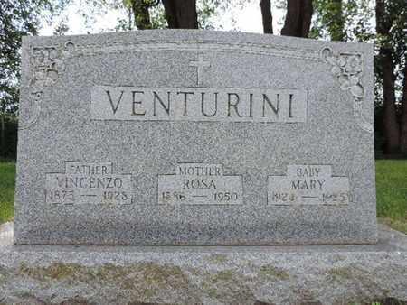 VENTURINI, VINCENZO - Franklin County, Ohio   VINCENZO VENTURINI - Ohio Gravestone Photos