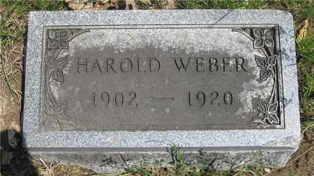 WEBER, HAROLD - Franklin County, Ohio | HAROLD WEBER - Ohio Gravestone Photos