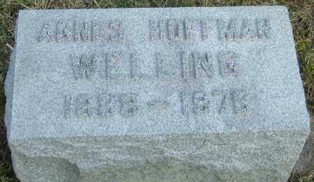 HOFFMAN WELLING, AGNES - Franklin County, Ohio | AGNES HOFFMAN WELLING - Ohio Gravestone Photos
