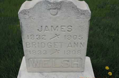 WELSH, JAMES - Franklin County, Ohio | JAMES WELSH - Ohio Gravestone Photos